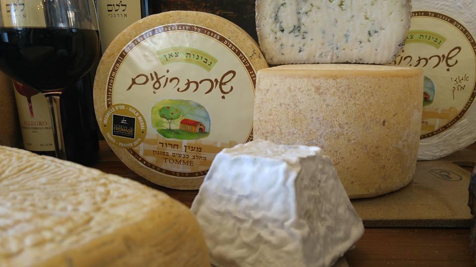 מחלבת שירת רועים מחלבה כשרה מבחר גבינות