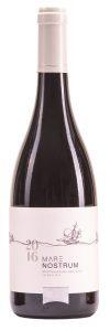 יקב מאיה -נוסטרום 16 - צילום רן הילל יין כשר