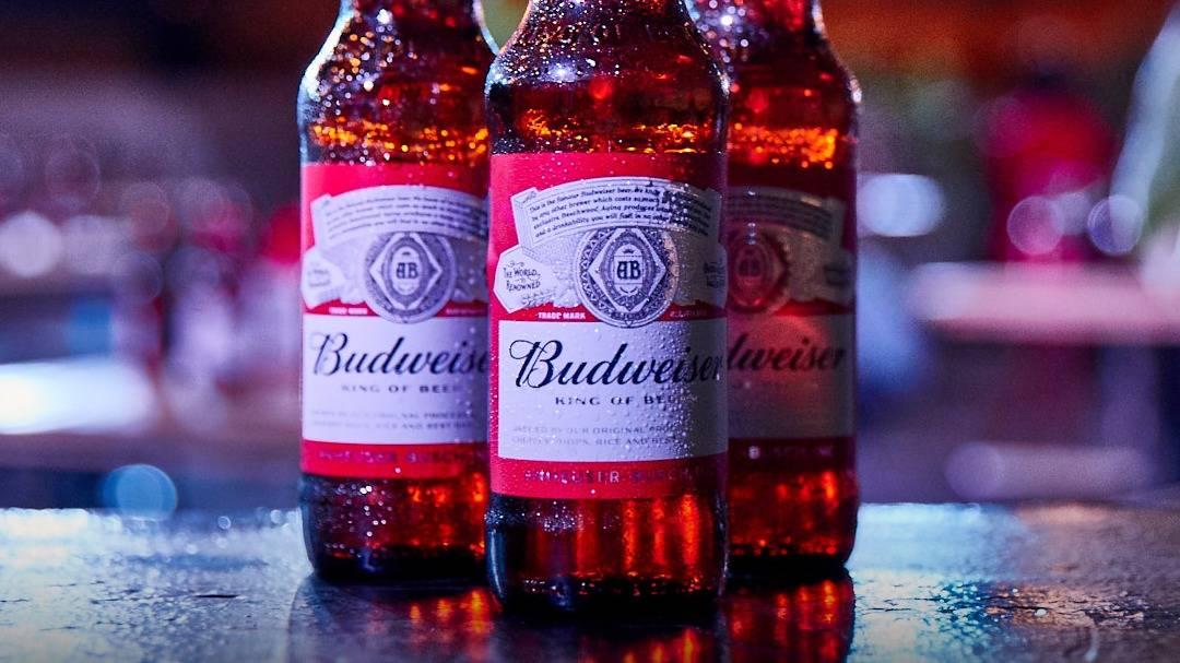באדוויזר בירה כשרה
